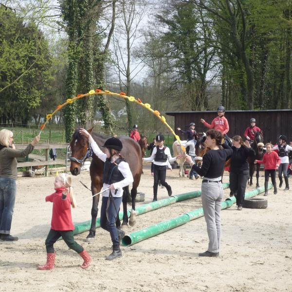 Tellington TTouch®, Reitunterricht und andere Angebote in Langenfeld